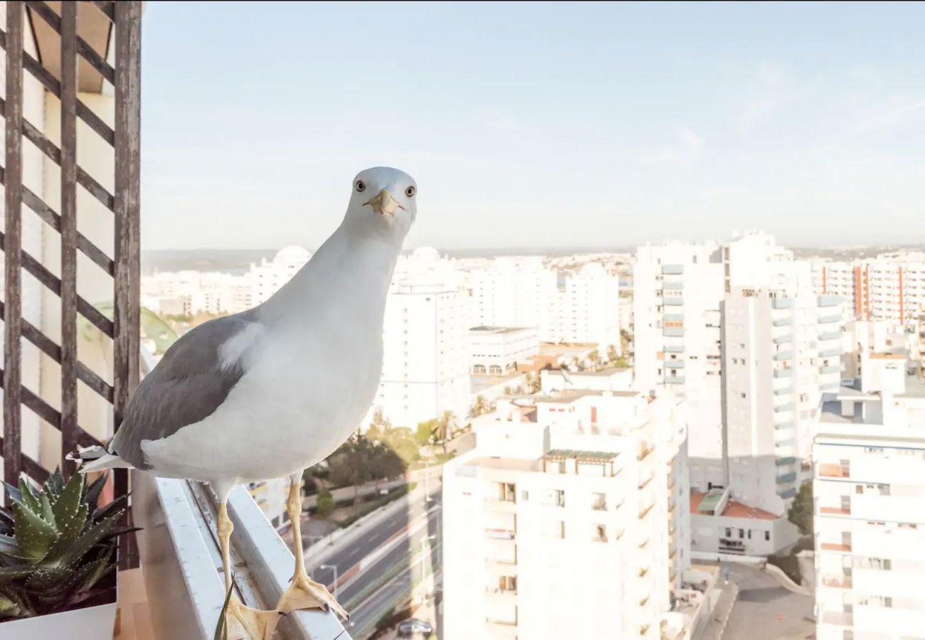 Estúdio em Portimão - Cool Bright Beach Studio by Real Life Concierge